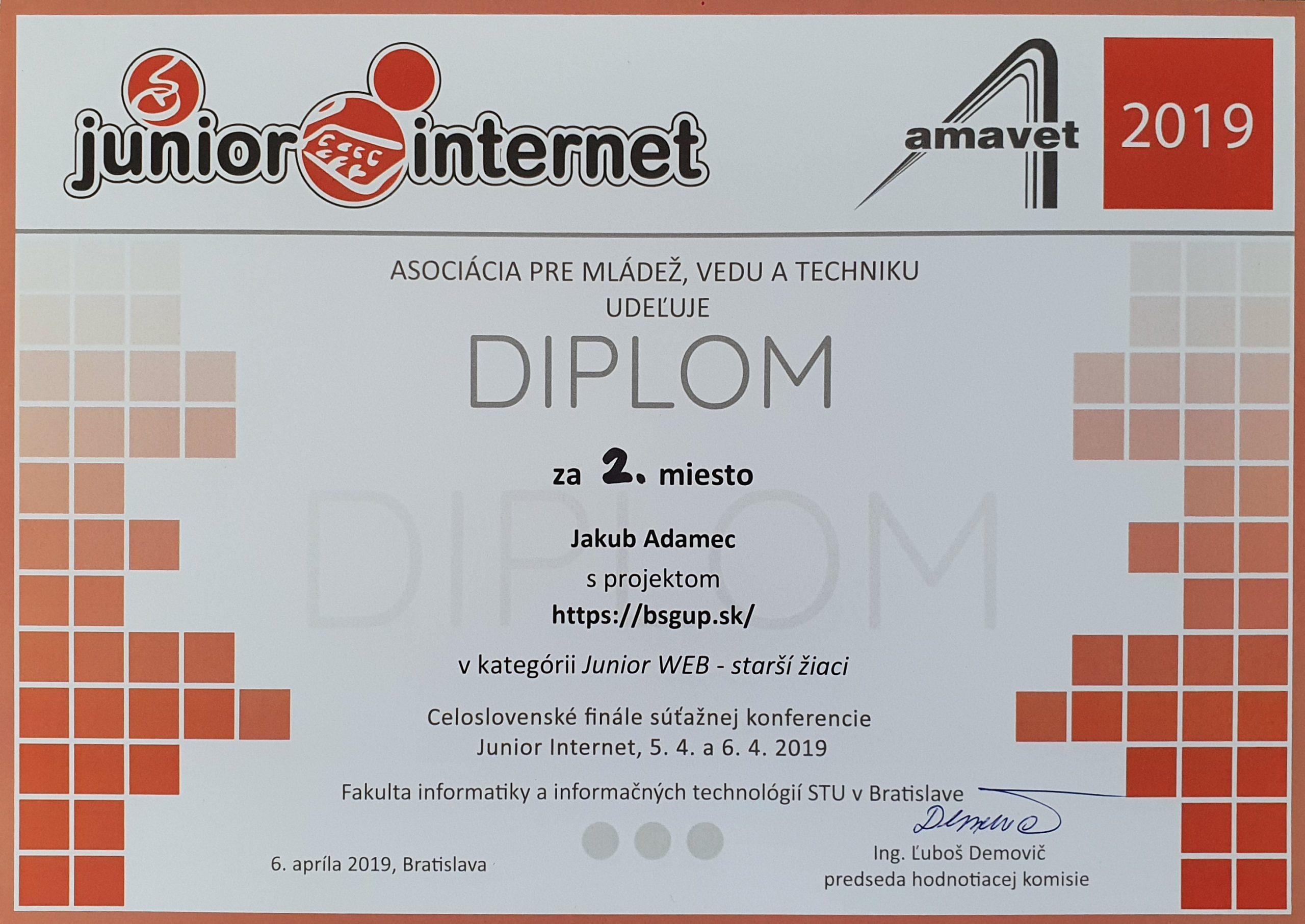 2. miesto, Junior Internet AMAVET